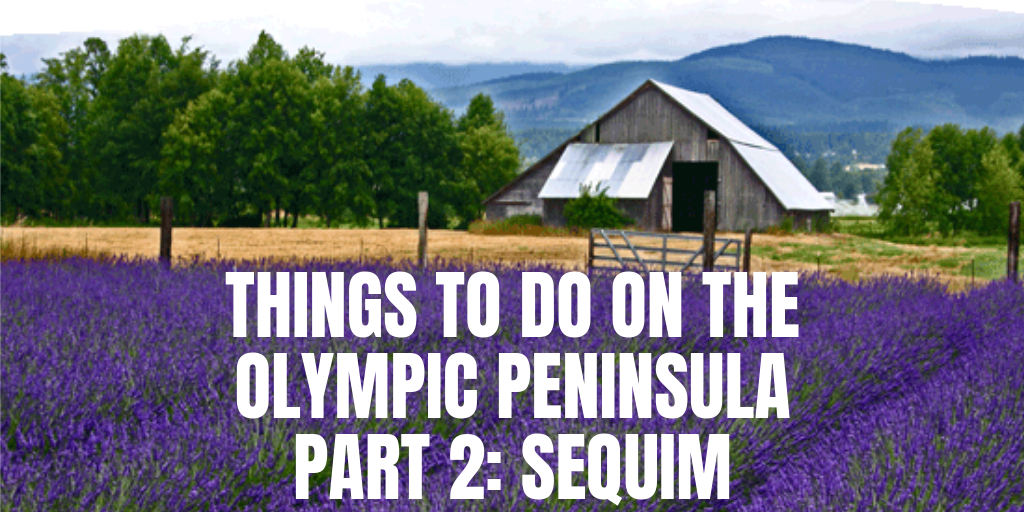 Things to do on the Olympic Peninsula Part 2: Sequim   Blog
